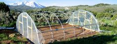 28 x 28 ft Quonset Greenhouse Kit - Hoop House - Cold Frame - High Tunnel Greenhouse Film, Best Greenhouse, Greenhouse Plans, Greenhouse Gardening, Sustainable Practices, Sustainable Design, Greenhouse Supplies, Gardening Supplies, Full Sun Plants