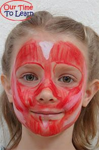 The Muscular System Face 113