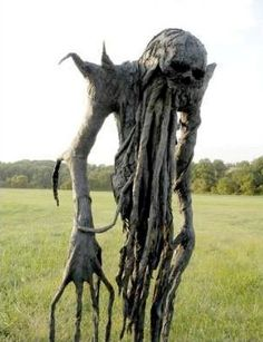 This is a Scarecrow - to keep humans and animals out of your garden