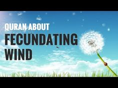 Fecundating winds quran in english