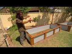 Wicking Garden Beds Costa's Garden Odyssey on SBS - YouTube Drought resistant gardening. Veggie garden. Australian garden.