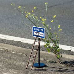 Miniature Warning Signs and Other Humorous and Unexpected Interventions Of A Minature World CutesyPooh is part of Art intervention Miniature Warning Signs and Other Humorous and Unexpected Interve - Art Intervention, Grafiti, Colossal Art, Street Signs, Warning Signs, Funny Art, Funny Pics, Humor, Street Artists