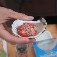 Club Fanø Austernsafari, ein fantastisches, gastronomisches Erlebnis im Nationalpark Wattenmeer., Aktivität, Fanö