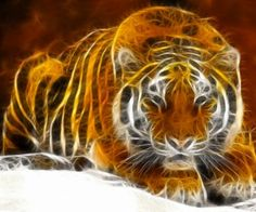 fractal animal | tigers fractalius HD Wallpaper - Wild Animal & Reptiles (#685587)