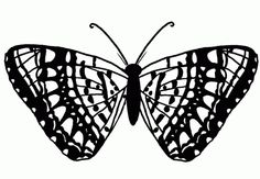 Butterflies & Moths Metamorphoses Coloring Books and Free Clipart