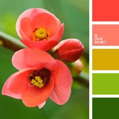Цветовая палитра №382