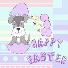 Happy Easter   #candycolours #happyeaster #minichicks #easteregg #