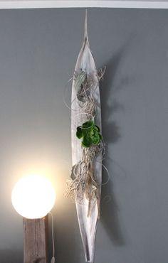 WD50 – Großes Kokosblatt als Wanddeko! Großes Kokosblatt weiß gebeizt, natürlich dekoriert mit einer großen künstlichen Sukkulente ! Größe ca. 140cm, kann waagrecht und senkrecht angebracht werden! Preis 89,90€