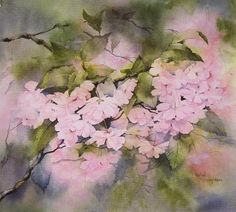 "Photo from album ""Rachel McNaughton. Акварель"" on Yandex. Cherry Blossom Watercolor, Kids Watercolor, Watercolor Pictures, Watercolor Flowers, Watercolor Paintings, Art Paintings, Art Floral, Pretty Art, Funny Art"