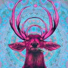 Oh my deer! At ChillWaze, we love art. One way we aim to share our love for art with you is by highlighting local artists each month and sharing our favorite artwork of theirs with you. #chillwaze