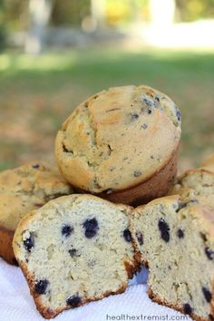 Gluten Free Paleo Blueberry Muffins Made with Coconut Flour