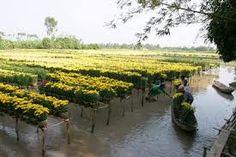 Kết quả hình ảnh cho làng nghề  việt nam