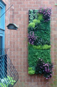 hanging gardens.  I would love to put this on that pillar on the balcony.