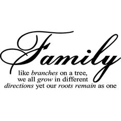 'Family Like Branches On A Tree' Vinyl Wart Art Lettering ($30) ❤ liked on Polyvore featuring home, home decor, wall art, black, phrase, quotes, saying, text, tree home decor and word wall art