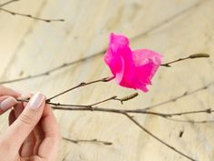 This spring-like bouquet of flowers made out of tissue paper is quick and easy to create. The paper flowers can easily be made and attached to the branches, so you can create a great effect with little effort or cost.