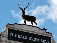 The curiously named Bald Faced Stag pub is in East Finchley, London. The handsome tavern is a late Victorian rebuild of an eighteenth century inn. Nobody is sure how it got its name, but it is Georgian slang for a bald man.