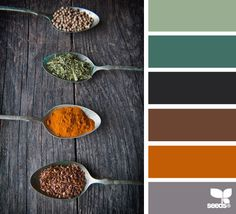Rich, gorgeous palette perfect for a high Depth or Legacy value. #VoiceValues | spiced hues via Design-Seeds | commentary via The Voice Bureau at AbbyKerr.com