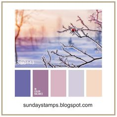 Sunday Stamps... Weekly Challenge: SSC143 Winter Frost