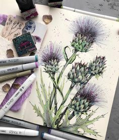 Watercolor Journal, Watercolor Projects, Watercolor Print, Watercolor Paintings, Watercolours, Nature Sketch, Nature Drawing, Illustration Blume, Watercolor Illustration