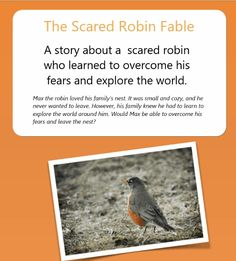 The Scared Robin Fable. Hypnotherapy in Melbourne to reduce stress, anxiety, depression, weight loss and quit smoking, with one of the best hypnotherapists Flying Lessons, Reflection Questions, Fathers Say, Natural Curiosities, Hypnotherapy, What Can I Do, Love Him, Melbourne, Robin