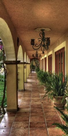 Courtyard in San Jose del Cabo, Mexico • photo: DTherien on deviantart