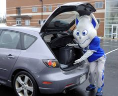 Saint Louis University Named a 'Green College' | Billiken at the annual ewaste drive.