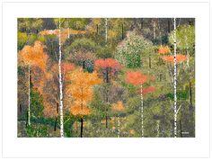 """Treescape"" by Hal Lasko, 98 year-old Microsoft Paint artist.  Amazing..."