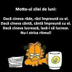 Deci azi e luni ! Funny Jockes, Funny Texts, Funny Quotes, Hilarious, Funny Stuff, Funny Bunnies, Sarcasm, Funny Pictures, Jokes