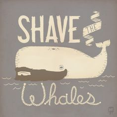 Shave the Whales by Muddybeats    Cute Animal Artworks