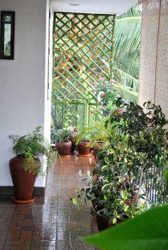 "balcony garden - lovely banboo ""grill"""