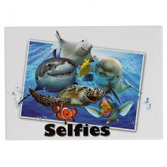 MAGNP47 - Calamite da Frigo con Selfie di Animali - Animali del Mare by Howard Robinson -  Puckator IT #zoo #calamite #pelfie