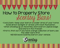 How to properly store Scentsy Bars.