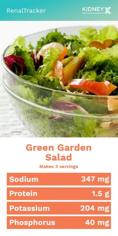 A healthy high fiber snack can be taken with or without dressing Click image for this kidney-friendly salad recipe Renal Diet Recipes Renal Diet Dinner Recipes Diet Dinner Recipes, Lunch Recipes, Salad Recipes, Diet Recipes, Vegetarian Recipes, Healthy Recipes, Low Phosphorus Foods, Renal Diet, Dialysis Diet