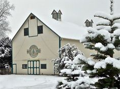 Christmas Trees and Old-Fashioned Christmas Spirit at the Historic Carnation Tree Farm, Thursday to Sunday 9:00 AM-4:00 PM