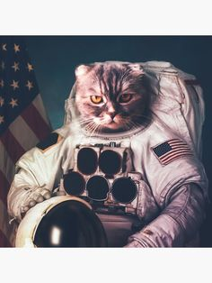 Beautiful cat astronaut Art Print by vadimsadovski Space Cat, Animal Letters, Cat Wallpaper, Cat Quotes, Wall Art Pictures, Beautiful Cats, Beautiful Space, Cool Cats, Cat Art