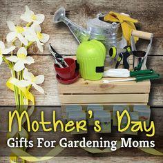 Garden Design with Motherus Day Gift Ideas Home Farmer with Princess Plant from homefarmer.com