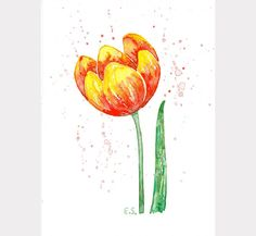 Floral watercolor Tulip Original watercolor painting Wall decor Flower art spring botanical art Scarlet red yellow green by BluePalette on Etsy https://www.etsy.com/listing/274768890/floral-watercolor-tulip-original