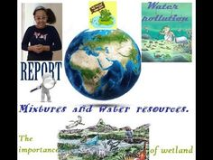 Mixtures and water resources. Water Pollution, Water Resources, Petunias, Christmas Bulbs, Science, Make It Yourself, Christmas Light Bulbs, Science Comics