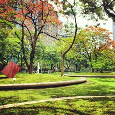 Lovely park in the middle of the Makati Central Business District with lots of restaurants to choose from. There's also a jogging path for office workers who'd like to put in some exercise before or after office hours. During the Christmas season, there's a beautiful lights and sounds show that is not to be missed. Makati City, Central Business District, Beautiful Lights, Outdoor Furniture, Outdoor Decor, Jogging, Philippines, Paths, Restaurants
