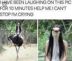 Humour Disney, Funny Disney Memes, Crazy Funny Memes, Really Funny Memes, Stupid Funny Memes, Funny Relatable Memes, Haha Funny, Hilarious, Funny Stuff