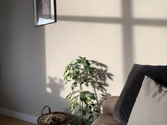 Meet Sunday Soul by COAT. A welcoming neutral paint, you can feel this warm taupe in the background. Perfect for the bedroom, but super versatile so can be used anywhere around the house. Pair with some plants to really turn your space into a home. Taupe Paint Colors, Neutral Paint, Designer Shades, Paint Colors For Living Room, Sunday, Meet, It Is Finished, Warm, Space