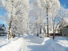 Rustic street in winter