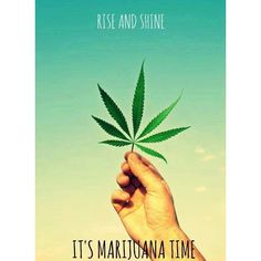 Good morning☀️ #RiseAndShine!!! We're open and ready to help with your medicine needs #privatereserveog #prop215 #420 #710 #sandiego #california #bud #nug #flower #green #loud #dank #topshelflife #dab #fire #lit #sativa #indica #hybrid #love #girlswhosmoke #ganjagirls #weed #smokeweed #ftp #dabbersonly #monday #newweek #goodmorning
