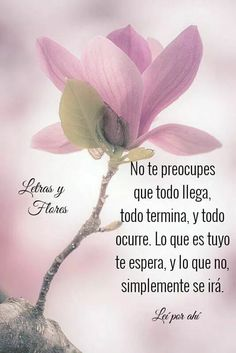 Spanish Phrases, Love Phrases, Spanish Quotes, Love Life Quotes, Daily Quotes, Woman Quotes, Positive Words, Positive Life, Good Morning Friends Quotes