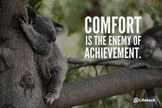 Comfort is the enemy #motivation #pic