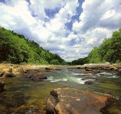 One of my favorite WV trout streams - Shavers Fork of Cheat River