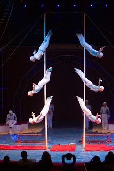 Cool act! Acrobats at the circus in Ahoy Rotterdam