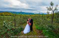 Doe Creek Farm, Doe Creek Farm Weddings, Doe Creek Farm Events, Pembroke Virginia Weddings, Farm Wedding Photography, Doe Creek Farm Apple Orchard, Photographic Dreams | Michael Keyes Wedding Photography.