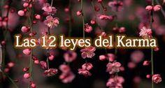 Las 12 Leyes del Karma.