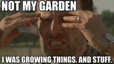 Rick Grimes meme not my garden I was growing things and stuff Walking Dead 4x02 Infected Imgur